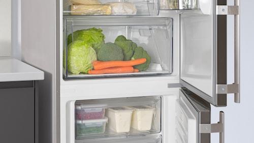 الثلاجة والمجمّد