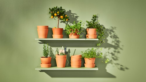 Outdoor plant pots