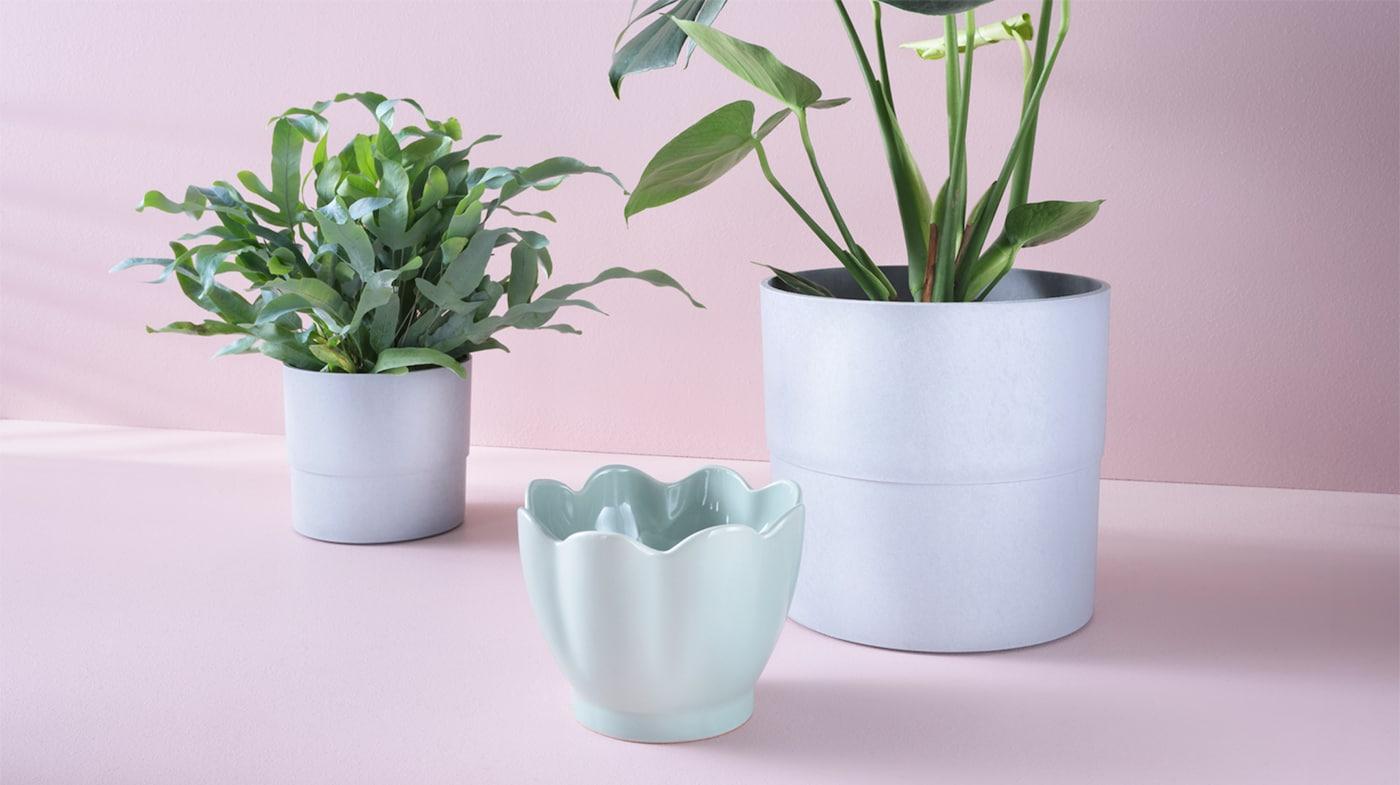 Macetas Compra Online IKEA