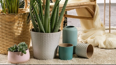 Planter, blomsterpotter og pidestaller